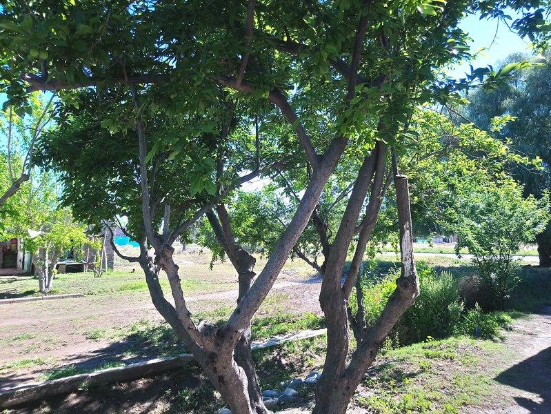 Departamento Turístico Tello, vacation rental in San Rafael