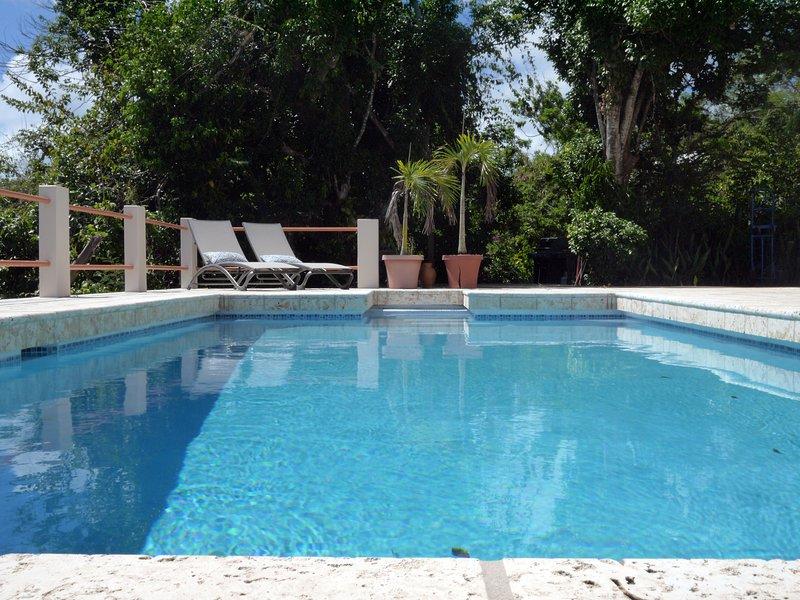 Primavera 2018 - piscina recém ressurgiu!