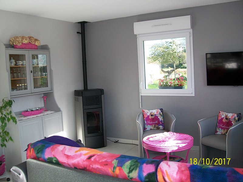 woonkamer met houtkachel en TV