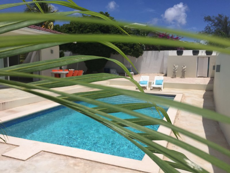 sneak peek though the plants on the pool area. Very private and a nice Caribbean Breeze.