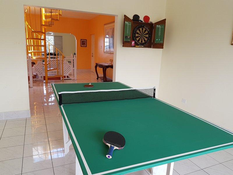 Darts or Ping Pong anyone?