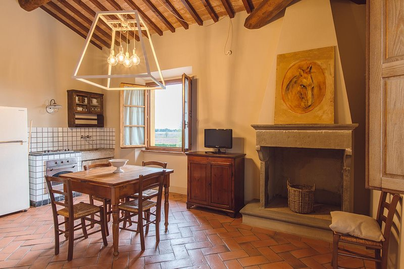 Villa Aia Vecchia (Apartment 8), vacation rental in Bibbona