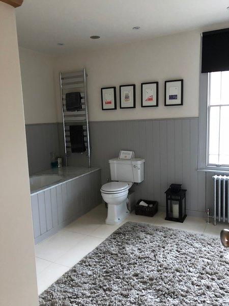 Luxurious family bath room