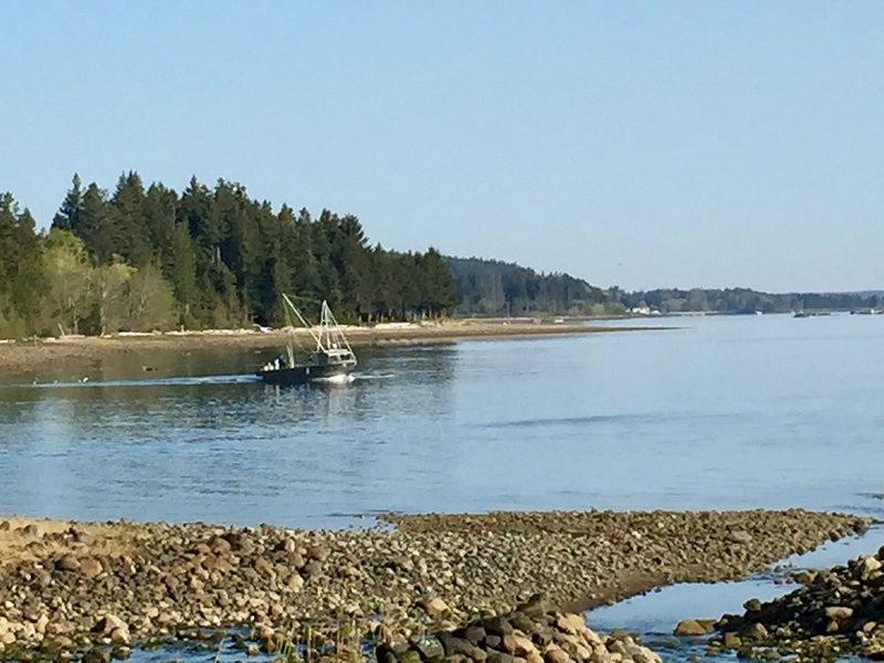Local oyster boat with views north to Courtenay and Comox