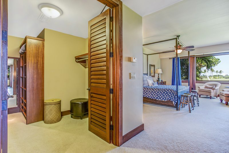 Master Bedroom and Spacious Walk-in Closet