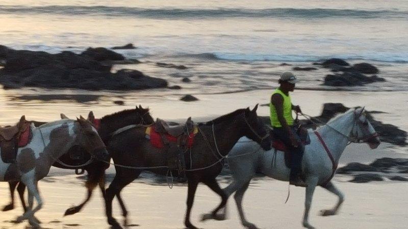 ¿Qué tal un paseo en la playa