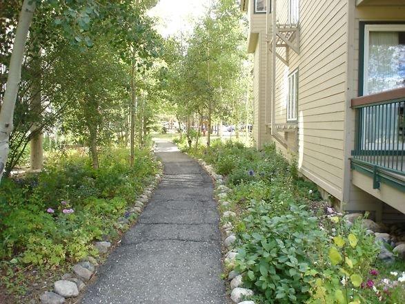 Pathway through The Pines Condominiums