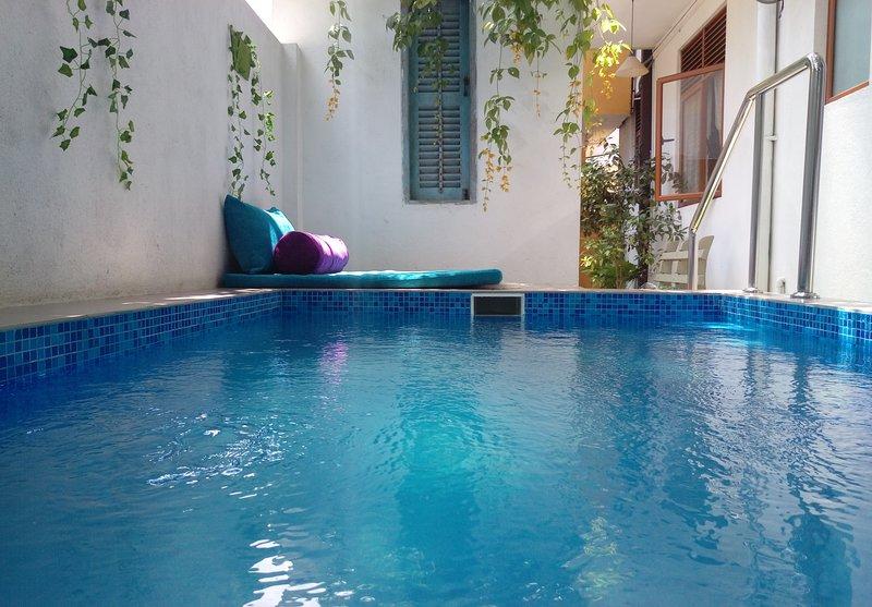 Villa With Private Plunge Pool, alquiler vacacional en Panadura