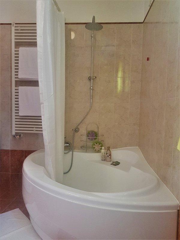 bathroom with tub and giant shower head