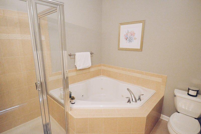 Mestre Quarto de banho com banheira de hidromassagem + chuveiro espaçoso
