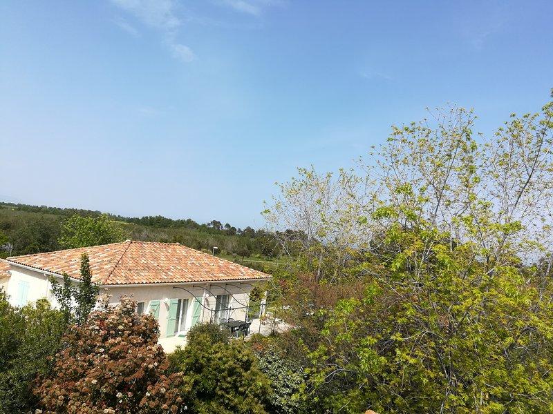 aerial view villa and garden