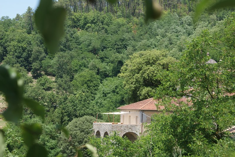 Sesta Godano: La Canonica - Rio, great place to  explore and experience Liguria, holiday rental in Tornolo