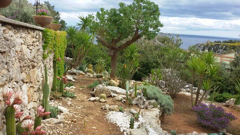 garden overlooking the sea