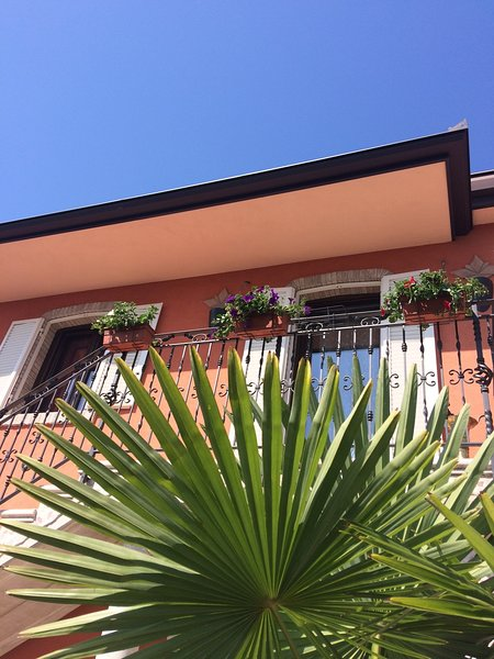 B&B LA PALMA, holiday rental in Province of Modena
