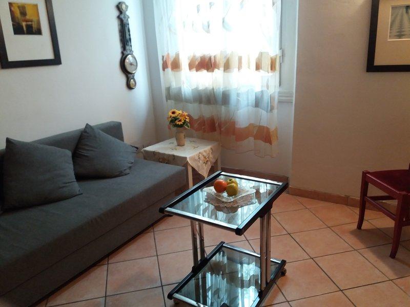 Appartamento vicino alla Fortezza e al Centro Fi, casa vacanza a Vitolini