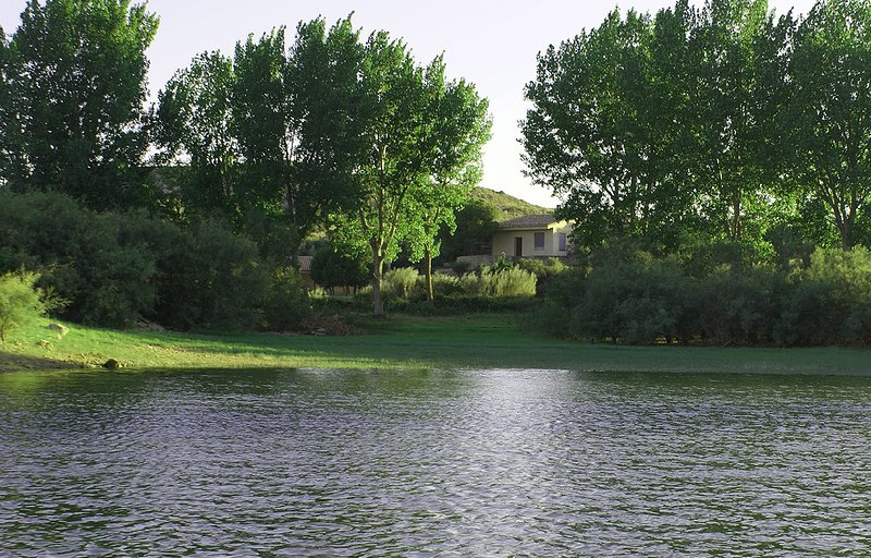 View vanaf het meer.