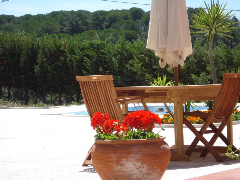 Amazing villa (country side settings close to the sea), holiday rental in Coimbra District