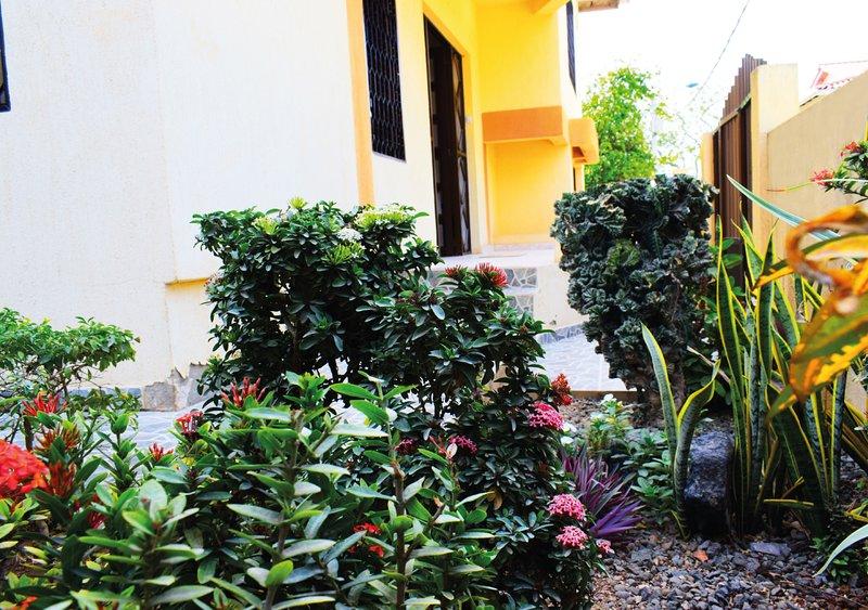View garden to the main entrance