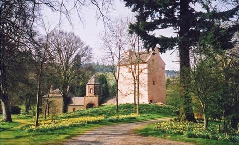 Barns Tower in the Sping.