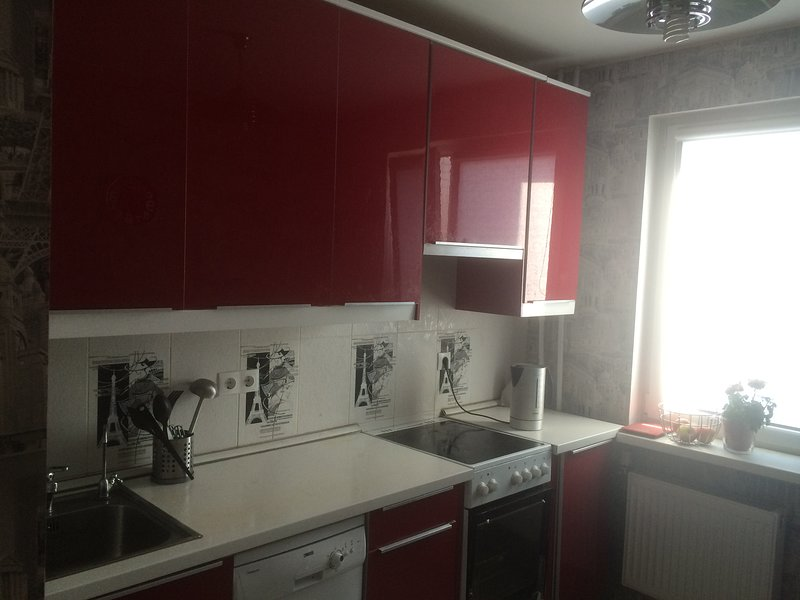 Apartment for rent .Very close to metro stations.Clean,Quite,comfortable., location de vacances à Kurortny District