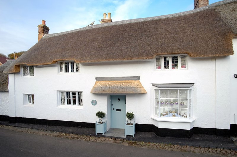 The Old Sweet Shop, Minehead - Characterful thatched cottage with hot tub!, location de vacances à Wootton Courtenay
