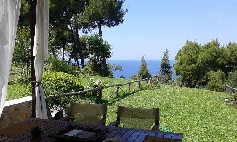 Stylish, big & bright family Villa next to Beach, holiday rental in Fourka