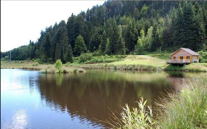Chalet avec étang de pêche privé sur un hectare proche de Gérardmer, vacation rental in Autrey