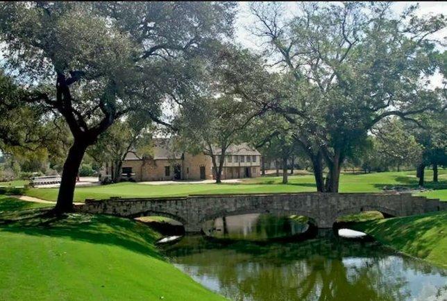 Park Ridge Beagle