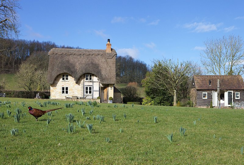 Field Cottage, holiday rental in Wickhamford