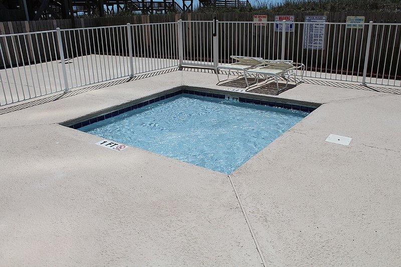 piscina gatito