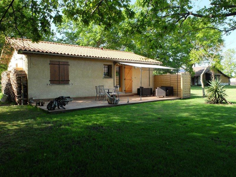 Backyard with terrace