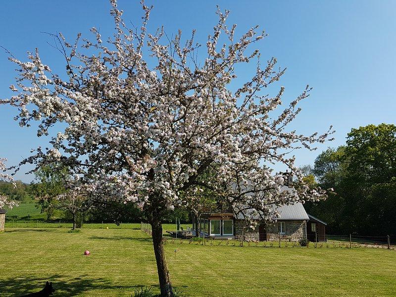 The Perfect Retreat  - La Jeuliére Gite, casa vacanza a Landelles-et-Coupigny