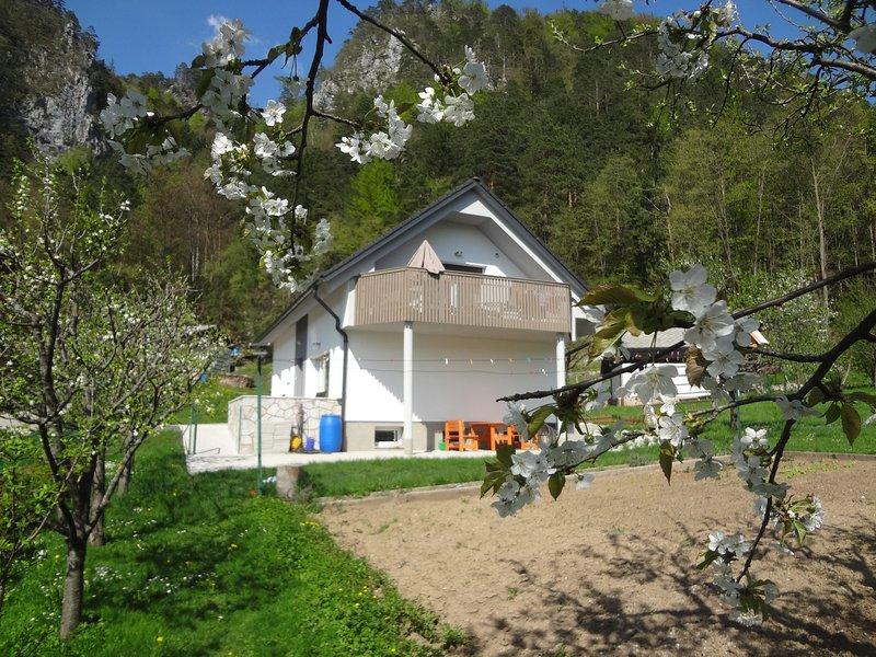 Mit Blick auf das Haus vom Garten im Frühjahr