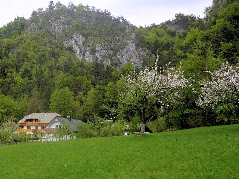 Blick auf das Haus von der nahe gelegenen Wiese im Frühjahr.