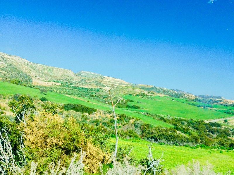 Maroni countdyside. From Cyprus's Retreat, village Maroni, Larnaca Cyprus.