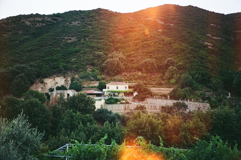 Villa Kamilakis Escape To Nature, holiday rental in Vathi