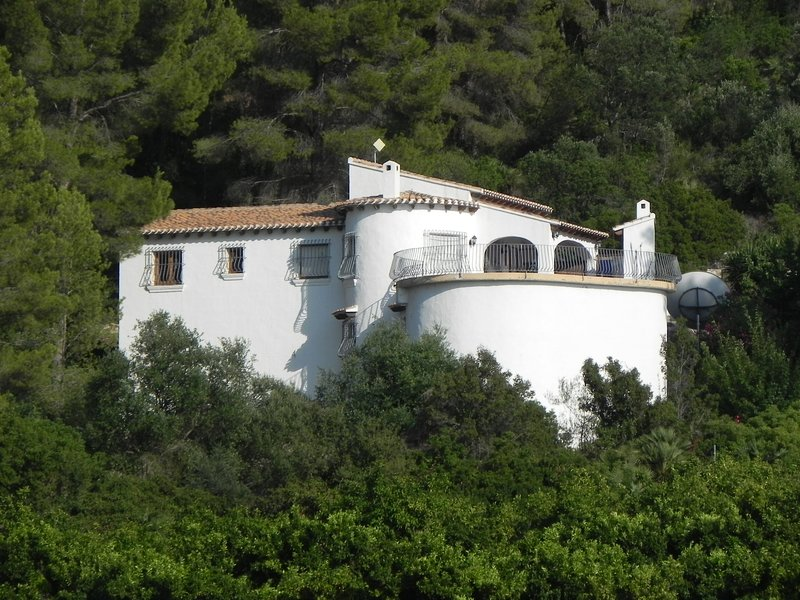 A view of the villa from the orange groves
