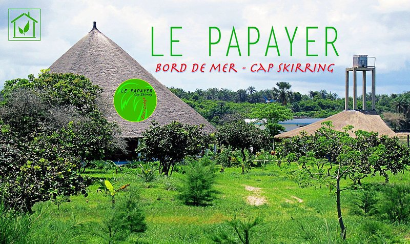 The Papaya Ecolodge paradise on the seafront, between the rice fields and the beach.