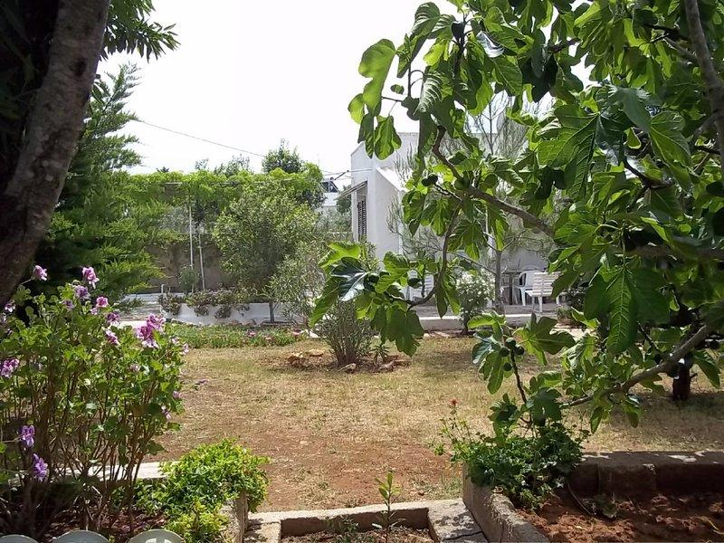 Casa vacanza fico d'india, holiday rental in Salmenta