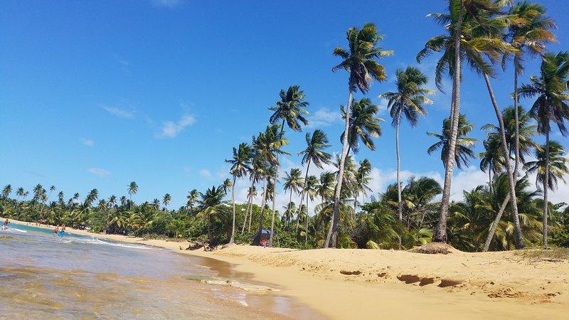 Tant de plages à choisir