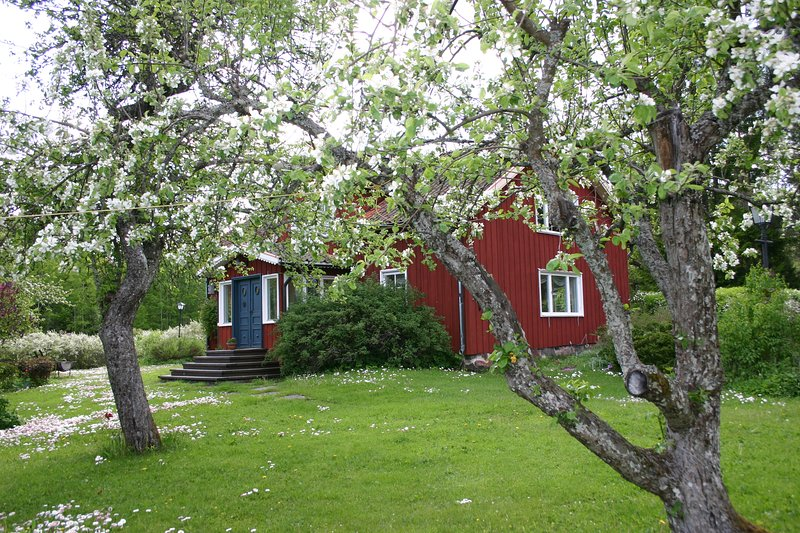 Summer House near the sea, holiday rental in Oregrund