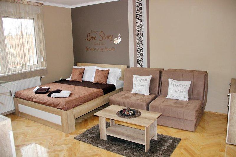 Apartment Cherry, holiday rental in Zrenjanin