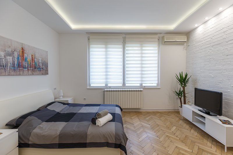 Banjac Lux Apartment , city center, vacation rental in Belgrade