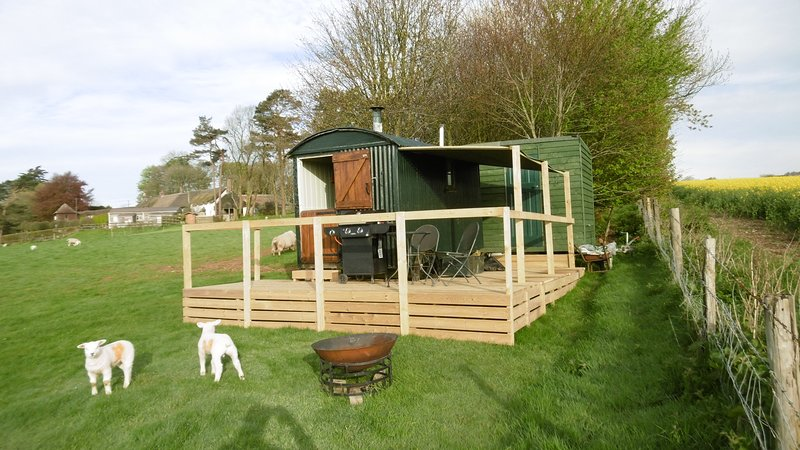 A charming Shepherd's Hut in a quiet location on our small farm in Milton Abbas, holiday rental in Turnworth