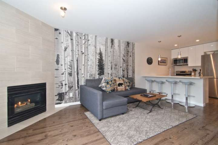 SUPERB Location in MARKETPLACE,WHISTLER VILLAGE. FULLY RENOVATED UNIT;Great Valu Chalet in Whistler