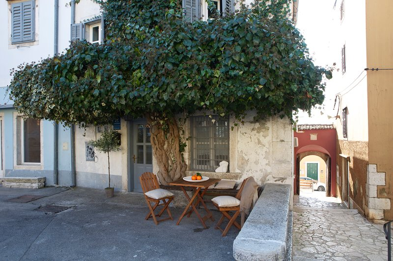 Villas Andromeda -Villa Leo Minor, vacation rental in Vrsar