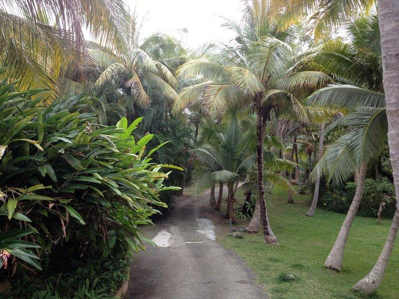 Escale Tropicale - Villa Crépuscule, casa vacanza a Nuova Caledonia