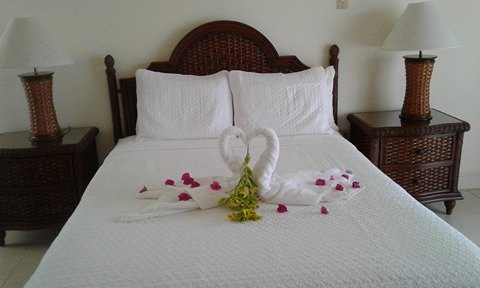 Romantic Hideaway... Tobago Plantations, vacation rental in Lambeau