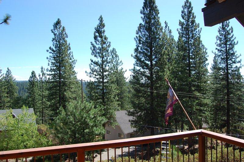 vue sur la forêt belle et ouverte de la terrasse.