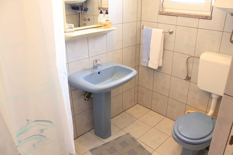 A1 Lijevi (3+2): bathroom with toilet